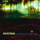 BUCKETHEAD - A REAL DIAMOND IN THE ROUGH - RARE OOP - LIKE NEW - FREE SHIPPING
