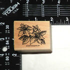 Rubber Stamp LILLY FLOWERS Stampin Up