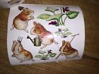 Lot of 3 Sheets of Stickers PETER RABBIT BEATRIX POTTER Garden Guinea Pig 2001
