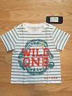Tommy Hilfiger Toddler Boy Striped Tee Shirt size 2T NWT