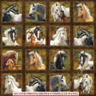 60 BLOCKS NORTHCOTT WILD AND FREE 21854 36 HORSES WESTERN FABRIC PANEL 24X44