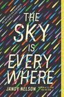 The Sky Is Everywhere by Jandy Nelson.