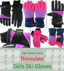 Girls Ski Gloves Kids 3M Thinsulate Winter Windproof Pink Warm High Desert Gear