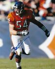 Brian Urlacher Rookie Cards and Memorabilia Guide 59