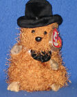 TY PUNXSUTAWNEY PHIL 2005 GROUNDHOG BEANIE BABY - MINT with MINT TAGS