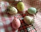 5 Primitive Small 1 1/2 In EASTER EGGS Feather Tree Ornies Ornament