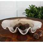 Clam Shell Display Bowl Coastal Beach House Decor Large 23