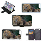 LION CUBS NATURE Wallet Flip Phone Case or Cover iPhone Compatible (I)