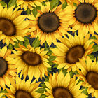 Sunset Blooms cotton quilt fabric by Wilmington Sunflowers on Black