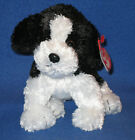 TY RIGGINS the DOG BEANIE BABY - MINT with MINT TAG (TUSH TAG  FLAW- SEE PICS)