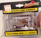 AUTOSCENES WOODLAND SCENICS PETERS PAINTING AS5539 HO SCALE AS5553 NEW