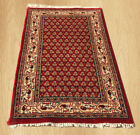 Authentic Hand knotted Indo Badami Wool Area Rug 3 x 2 FT (4739)