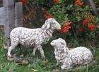 Sheep Nativity Set 2pc Indoor Outdoor Statues Best Nativity Yet 10 inch