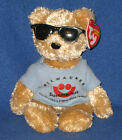 TY SUMMERFEST the BEAR BEANIE BABY - MINT with MINT TAGS