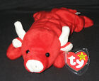 TY TABASCO the BULL BEANIE BABY- MINT with MINT TAGS