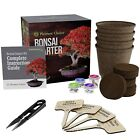 Bonsai Tree Starter Kit Leaf Trimmers Pruning Complete Gardening Set Pack 4 Seed