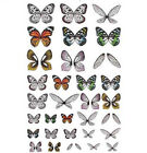 Tim Holtz Idea ology Collection Transparent Wings TH93785 2019