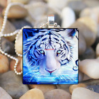 White Tiger Animal Art Cabochon Glass Tibet Silver Tile Chain Pendant Necklace