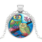 Owl Photo Tibet Silver Cabochon Glass Pendant Chain Necklace Jewelry
