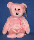 TY SUPPORT the BEAR BEANIE BABY - MINT with MINT TAGS
