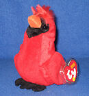TY REDFORD the CARDINAL BEANIE BABY - MINT with MINT TAGS