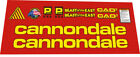 Cannondale beast of the east 1996 yellow DECAL SET