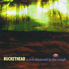 Buckethead - A Real Diamond in the Rough.  Rare New Sealed.
