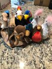 TY Beanie baby Bird Instant Collection all different lot of 11 protector tags