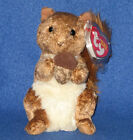 TY TREEHOUSE the SQUIRREL BEANIE BABY - MINT with MINT TAGS