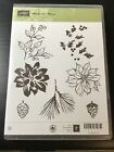 Stampin Up WATERCOLOR WINTER Cling Stamp Set