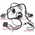 GY6 150cc ATV Go Kart Wire Harness Assembly CDI Switch Electric Part USA