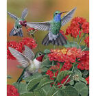 Full Drill DIY 5D Bird Flowers Diamond Painting Kits Art Embroidery Decor Gifts