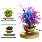 Magnetic Levitation Flower Pot Air Bonsai Floating Suspension Potted Plant Gifts