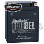 Bikemaster TruGel Battery Ducati 600TL (1985)