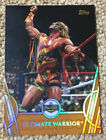 Ultimate Warrior Cards and Memorabilia Guide 27