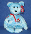 TY PINTA the BEAR BEANIE BABY - MINT with MINT TAGS