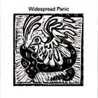 Widespread Panic by Widespread Panic (CD, Jul-1991, Volcano 3)