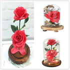 Romantic Flower Rose In Glass LDE Light Mothers Day Valentines Day Gift