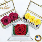 REAL Preserved Flower Forever Roses Crystal Birthday Anniversary Holiday Gift