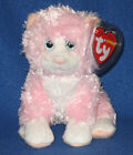 TY CURTSY the CAT BEANIE BABY - MINT with MINT TAGS