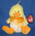 TY BILLINGHAM the DUCK BEANIE BABY - BBOM - MINT with MINT TAGS