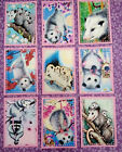 9 Possum Pocket Craft Card Inserts Scrapbooking Card Making Party Favors