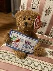 TY Beanie Baby: Small Bear 'You Did It!' Sign