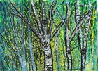 Original Art Painting of Birch Forest For Sale By from artist Katy Clark