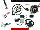 ATV 150CC 200CC 250CC CDI STATOR WIRING Loom Harness COIL Scooter Quad Scooter