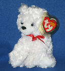 TY ICEBOX the BEAR BEANIE BABY - MINT with MINT TAG