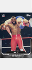 2020 TOPPS THIS MOMENT IN WWE HISTORY CARD HULK HOGAN & MR T #10