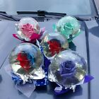Real Authentic Rainbow Rose in Glass Water Globe The Perfect Love Gift