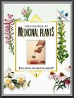 Encyclopedia of Medicinal Plants Education and Health by George Pamplona Roger