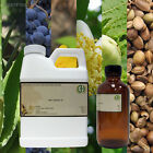 100 Pure Carrier Oils Cold Pressed FREE SHIPPING